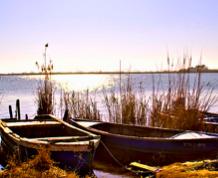 Delta del Ebro con niños 22 agosto