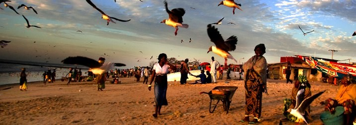 Norte del Senegal 6 días