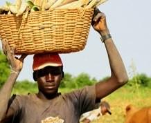 10 Días en Mali: Paisajes y Etnias de Africa