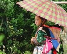 Vietnam en Julio, De los Khmers a los Viets