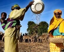 Senegal del 2 al 14 de Agosto