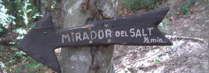 ¿Vamos hacer cabañas al bosque?