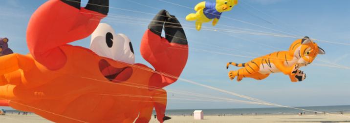 Ven a volar cometas y a jugar a Piratas en la playa