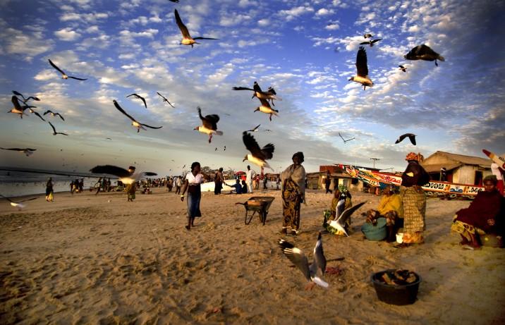 18 Agosto: Senegal, culturas del Sahel