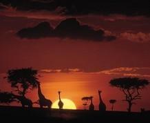 Agosto: Agosto en Kenya