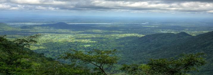 Camerún. Experiencia unica en Africa: Selvas y volcanes