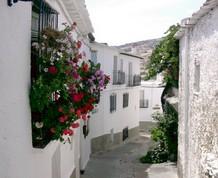 Noviembre: Las Alpujarras de Granada todo incluido