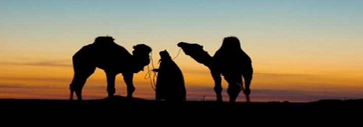 Fin de año en Túnez. Desierto, 4x4, oasis