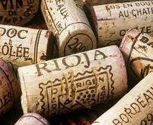 Semana Santa en La Rioja: ¡Diversión, cultura y vinitos!
