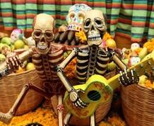 Puente de Noviembre: Senderismo y Halloween en el Montseny