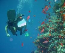 Crucero de Buceo por el Mar Rojo