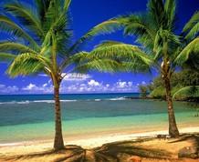 Navidad de Sol y Playa ¡¡Descubre el Destino!!