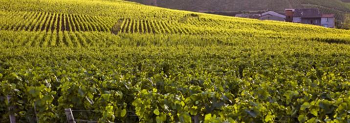 Semana Santa en Champagne y Borgoña