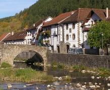 Selva de Irati: Bosques mágicos de Navarra