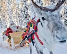 Puente de Diciembre: Laponia en familia. Conoce a Papa Noel
