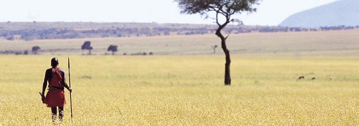 Safari en Kenya (II)