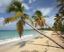Semana Santa: Crucero por el Caribe