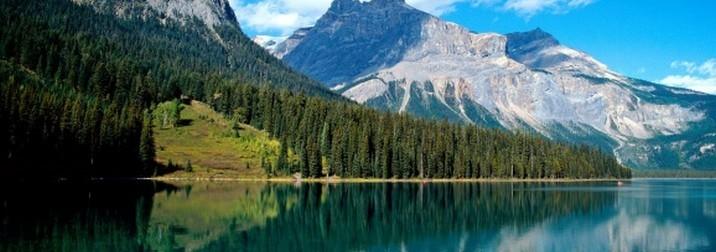 Agosto: Canadá, bonjour Quebec, Flor de Lis castillos y ballenas II