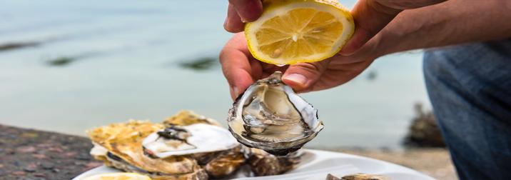 Fin de semana gastronómico en Delta del Ebro