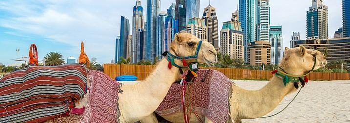Puente de diciembre: Dubai, Lujo entre Dunas