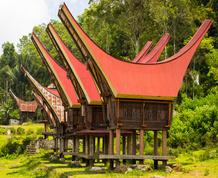 Indonesia, Transulawesi y Esencia Toraja