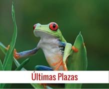 Agosto: Costa Rica, naturaleza, diversidad, aventura y...¡pura vida!