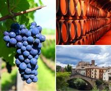 Descubre La Rioja: Bodegas y monasterios