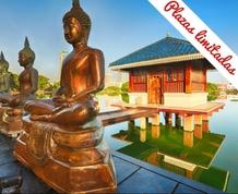 Fin de año: Sri Lanka, entre aroma de te y budismo