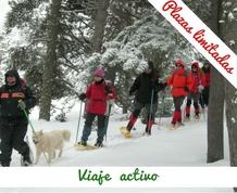 Marzo: Nieve y raquetas en refugio exclusivo