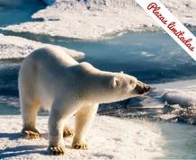 Expedición al Polo Norte: Svalbard