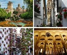 Fin de año single en Córdoba