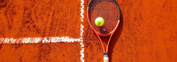 Febrero: Copa Davis en Marbella