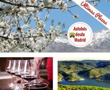 Marzo: Valle del Jerte en flor