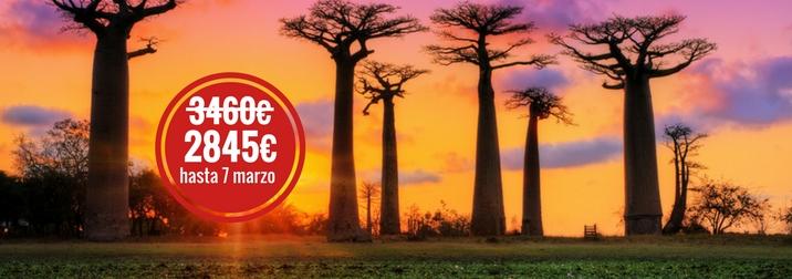 Agosto en Madagascar: fauna y naturaleza únicas en el mundo