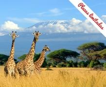 Julio en Kenya. Ultimas plazas !!!