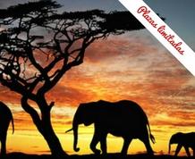Agosto en Kenia