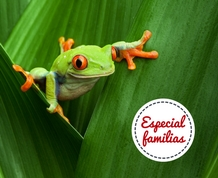 Agosto: Costa Rica en Família