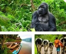 Agosto en Uganda: Gorilas, tribus y experiencia solidaria