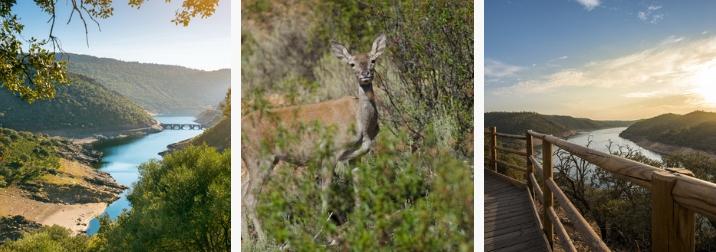 Vive el despertar del Otoño en el Parque Natural de Monfragüe. Amigos y Naturaleza