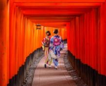 Agosto en Japón. Ceremonias, Costa, Alpes y Festivales