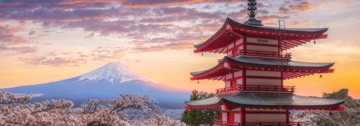 Japón. El contraste de lo tradicional y lo moderno