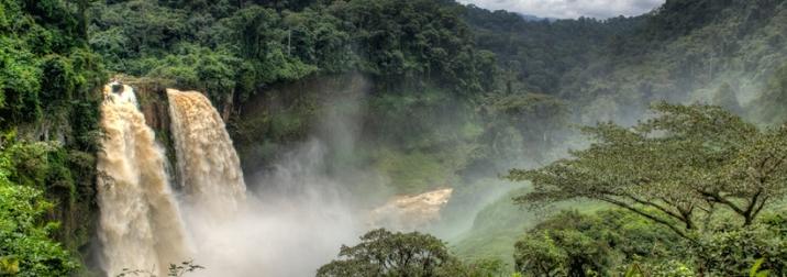 Camerún.Sabana, selva y tribus