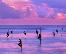 Sri Lanka: Especial festival de Perahera