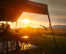 Safari por Tanzania: en busca de los 5 grandes