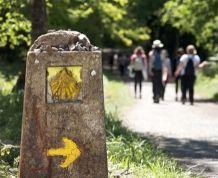 Navarra y Camino de Santiago Francés