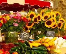 La Provenza Francesa: Rincones de Van Gogh