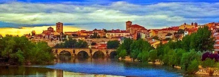 Puente de Noviembre en Zamora y Toro