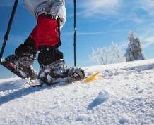 Raquetas de nieve y naturaleza