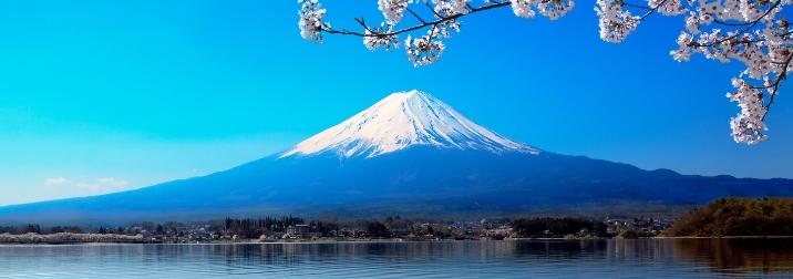 Semana Santa en Japón: Descubre los cerezos en flor