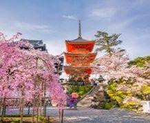 Japón: tradición, arte, cultura y modernidad